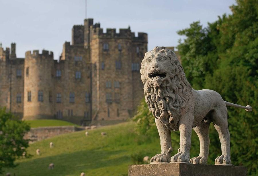 Alnwick Castle Sale Collection Details