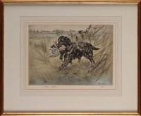 Lot 28 - Henry Wilkinson (1921-2001) A BLACK GUN DOG...