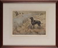 Lot 33 - Henry Wilkinson (1921-2001) A BLACK GUN DOG...
