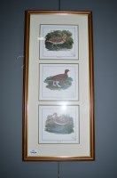 Lot 345A-Six game bird prints after Thomas Bewick, limited ...