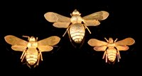 482 - Three gold bee brooches, boxed