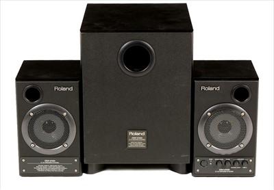 Lot 18-Roland DM-2100 2.1ch Speaker system
