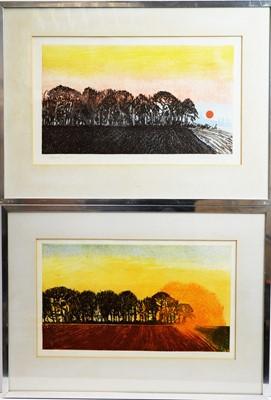 Lot 166 - Michael Carlo - etchings.