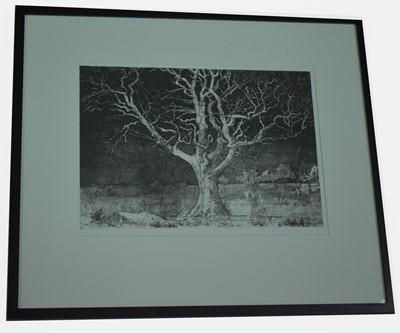 Lot 151 - Alan Turnbull - etching.