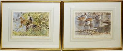 Lot 261 - Peter Partington - coloured etchings