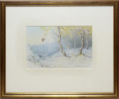 Lot 284 - Jonathan Sainsbury - watercolour