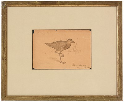 Lot 235 - Attributed to Thomas Bewick - watercolour.