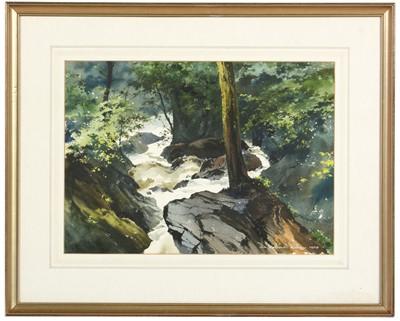 Lot 36 - Dennis Rothwell Bailey - watercolour
