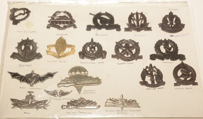 Lot 1190 - A collection of 18 Israel Military cap badges.