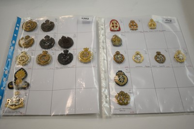 Lot 1202 - A collection of 21 cap badges.