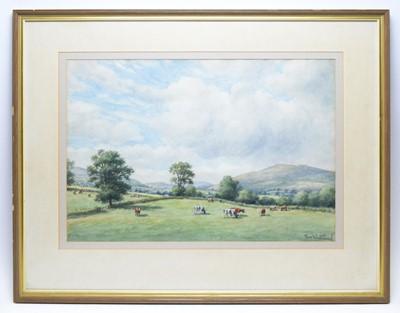 Lot 319 - Tom Whitehead - watercolours
