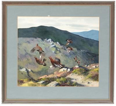 Lot 50 - Roger McPhail - watercolour
