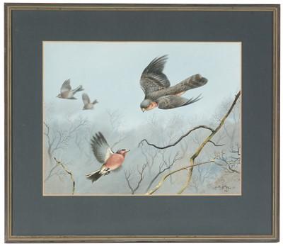 Lot 51 - Roger McPhail - watercolour