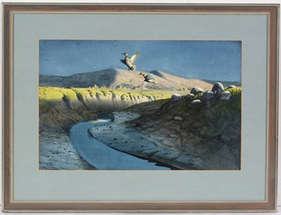 Lot 53 - Roger McPhail - watercolour