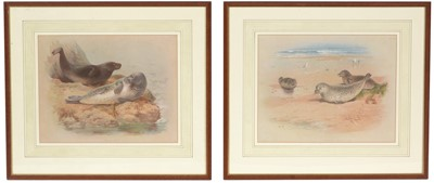 Lot 12 - After Archibald Thorburn - lithographs