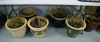 Lot 539 - Six modern pottery planters.