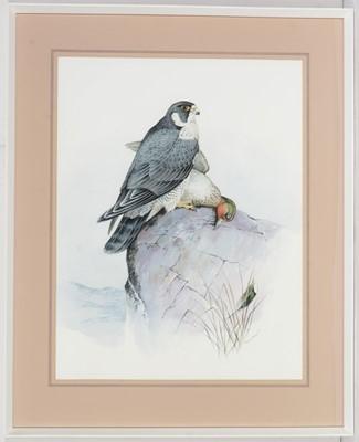 Lot 47 - Richard Ward - Watercolour