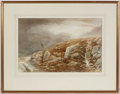 Lot 24 - Bill Jackson - watercolour