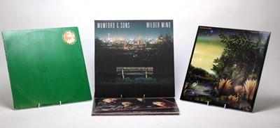 Lot 940 - Queen, Fleetwood Mac, Jimi Hendrix and Mumford & Sons LPs