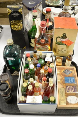 Lot 381 - A selection of liqueur and other miniatures.