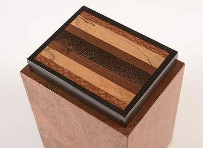 Lot 771 - Jeffrey Seaton specimen wood box