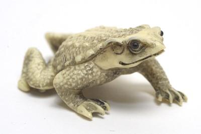 Lot 400A - Japanese toad netsuke