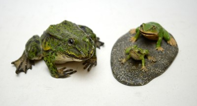 Lot 303 - Three cold painted bronze frog figures