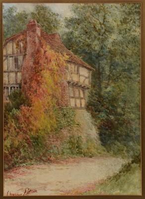Lot 681 - C* Potter - watercolour.