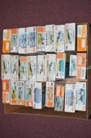 Lot 344 - Frog model constructor kits: orange series,...